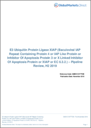 E3 Ubiquitin Protein Ligase XIAP - Pipeline Review, H1 2019
