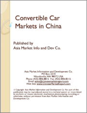 Convertible Car Markets in China