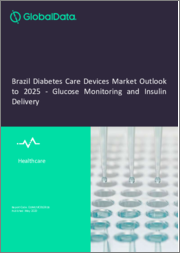 Brazil Diabetes Care Devices Market Outlook to 2025 - Glucose Monitoring and Insulin Delivery