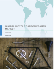 Bicycle Carbon Frames Market by Application and Geography - Forecast and Analysis 2020-2024