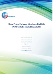 Global Proton Exchange Membrane Fuel Cells (PEMFC) Sales Market Report 2019