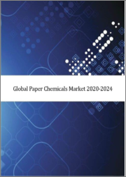 Global Paper Chemicals Market 2020-2024