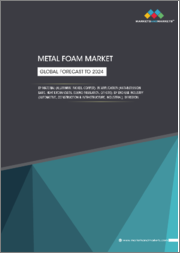 Metal Foam Market by Material (Aluminum, Copper, Nickel), Application (Anti-Intrusion Bars, Heat Exchangers, Sound Insulation), End-Use Industry (Automotive, Construction & Infrastructure, Industrial), and Region - Global Forecast to 2024