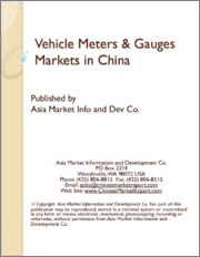 Vehicle Meters & Gauges Markets in China