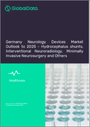 Germany Neurology Devices Market Outlook to 2025 - Hydrocephalus Shunts, Interventional Neuroradiology Devices, Neurosurgical Products and Others