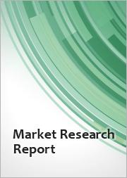 Global Floor Scrubber Battery Market 2020-2024