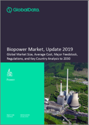 Biopower Market, Update 2019 - Global Market Size, Average Cost, Major Feedstock, Regulations, and Key Country Analysis to 2030