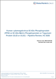 Human cytomegalovirus 65 kDa Phosphoprotein - Pipeline Review, H2 2019