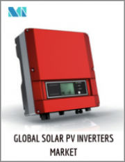 Solar PV Inverters Market - Growth, Trends, and Forecast (2020 - 2025)