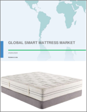 Smart Mattress Market by Distribution Channel and Geography - Forecast and Analysis 2020-2024
