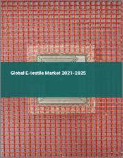 Global E-textile Market 2020-2024