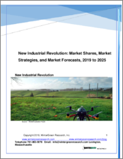 New Industrial Revolution: Market Shares, Strategies and Forecasts, Worldwide 2019 to 2025