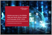 Mobile Services in the Middle East and North Africa: Trends and Forecasts 2019-2024