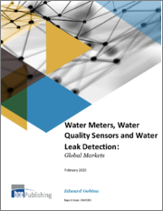 Water Meters, Water Quality Sensors and Water Leak Detection: Global Markets