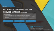 Oil and Gas Drone Services Market - Growth, Trends, and Forecasts (2020 - 2025)