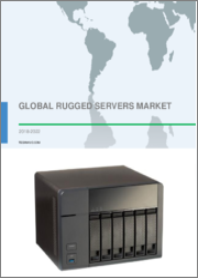 Global Rugged Servers Market