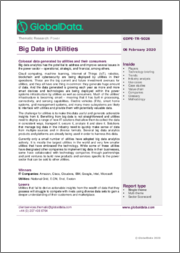 Big Data in Utilities - Thematic Research