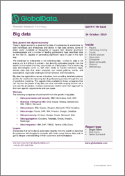 Big Data - Thematic Research