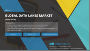 Data Lakes Market - Growth, Trends, and Forecast (2019 - 2024)