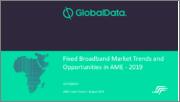 Fixed Broadband Market Trends and Opportunities in AME - 2019