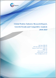 Global Pedelec Industry Research Report, Growth Trends and Competitive Analysis 2018-2025