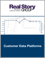 Customer Data Platforms