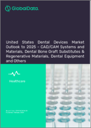 United States Dental Devices Market Outlook to 2025 - CAD/CAM Systems and Materials, Dental Bone Graft Substitutes & Regenerative Materials, Dental Equipment and Others.