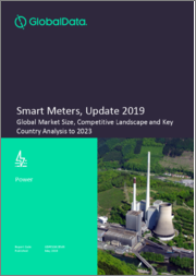 Smart Meters, Update 2019 - Global Market Size, Competitive Landscape, and Key Country Analysis to 2023