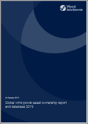 Global Wind Power Asset Ownership Report and Database 2019