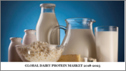 Global Dairy Protein Market - 2019-2026