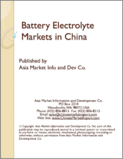 Battery Electrolyte Markets in China