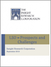 LSO - Prospects and Challenges: The Market for Network Application Orchestrators 2019-2025