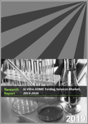 In Vitro ADME Testing Services Market, 2019-2030