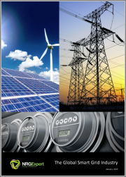 The Global Smart Grid Industry, 2019