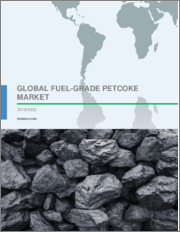 Global Fuel-Grade Petcoke Market 2019-2023