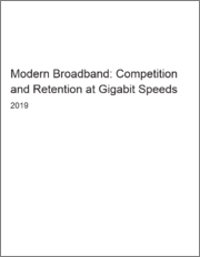Modern Broadband: Competition and Retention at Gigabit Speeds
