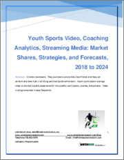 Youth Sports Video Equipment: Market Shares, Strategies and Forecasts, Worldwide 2019 to 2024