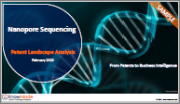 Nanopore Sequencing Patent Landscape Analysis