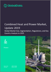 Combined Heat and Power Market, Update 2019 - Global Market Size, Segmentation, Regulations, and Key Country Analysis to 2025