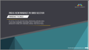 India HCM Market In SMB Sector, by Vertical (IT & ITES, Manufacturing, Professional Services, Retail & Wholesale, Automobile, Healthcare, Textile, Hospitality), & City (Bengaluru, Mumbai, NCR, Hyderabad, Chennai, Pune, Rest of India) - Forecast to 2022