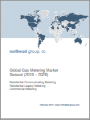 Global Gas Metering Market Dataset (2019-2028)