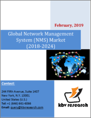 Global Network Management Systems (NMS) Market (2018 - 2024)