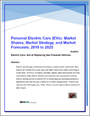 Personal Electric Vehicle EV Cars: Market Shares, Strategies and Forecasts, Worldwide 2019 to 2025