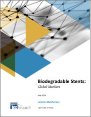 Biodegradable Stents: Global Markets