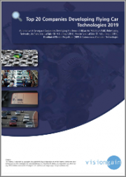 Top 20 Companies Developing Flying Car Technologies 2019: Automotive & Aerospace Companies Developing On Demand UAM, Ridesharing Networks, Air Taxis, VTOL, eVTOL, DEP & Autonomous Operation Technologies