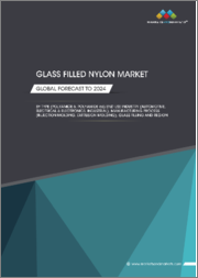 Glass Filled Nylon Market by Type (Polyamide 6, Polyamide 66),End Use Industry(Automotive, Electrical & Electronics, Industrial), Manufacturing Process(Injection Molding, Extrusion Molding), Glass Filling and Region Global Forecast to 2024