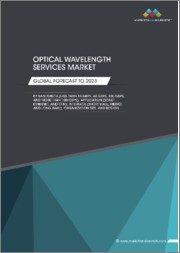 Optical Wavelength Services Market by Bandwidth (Less than 10 Gbps, 40 Gbps, 100 Gbps, & More than 100 Gbps), Application (SONET, Ethernet, & OTN), Interface (Short Haul, Metro, & Long Haul), Organization Size, & Region-Global Forecast to 2023