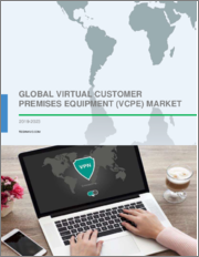 Global Virtual Customer Premises Equipment (vCPE) Market 2019-2023