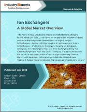 Ion Exchangers - A Global Market Overview