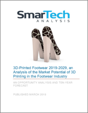 3D-Printed Footwear 2019-2029, An Analysis Of The Market Potential Of 3D Printing In The Footwear Industry
